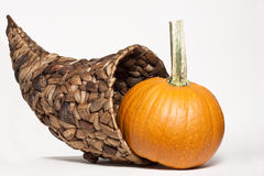 Cornucopia & Gourds Stock Photography