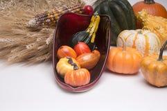 Cornucopia Harvest Time royalty free stock photos