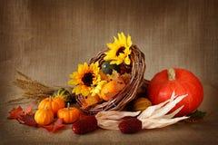 Cornucopia with pumpkins royalty free stock photos