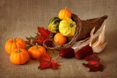 Cornucopia with pumpkins stock images