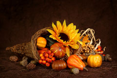 Cornucopia with pumpkins stock images