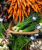 Cornucopia of vegetables in array of colors from local farmers market stock photography