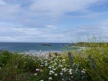 Cornwall coast line Royalty Free Stock Photography