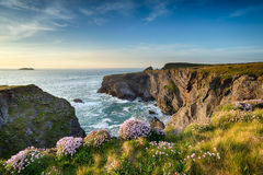 Cornwall Coastline Stock Photography