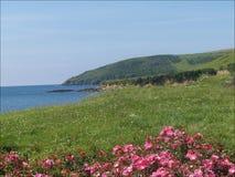Cornwall Royalty Free Stock Image
