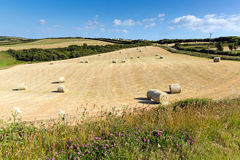 Cornwall country scene with hay bales like cotton reels on a beautiful sunny summer day stock photos