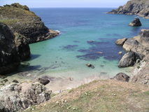 cornwall covekynance royaltyfri foto