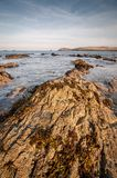 Cornwall landskap Arkivfoto