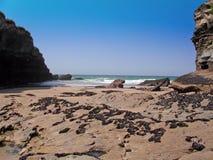 Cornwall strand 9 Royalty-vrije Stock Fotografie