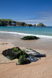 Cornwall Wybrzeże Obraz Royalty Free