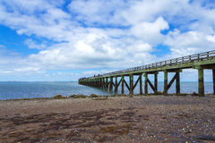 Cornwallis Wharf Auckland New Zealand. Beach and Park Royalty Free Stock Images