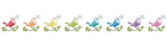 Coro de canto colorido arco-íris das aves canoras Imagens de Stock Royalty Free
