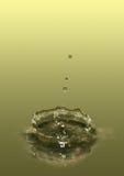 Coroa da água Ilustração do Vetor