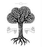 Coroa da árvore na forma da nuvem Fotografia de Stock Royalty Free