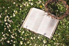 Coroa de couro preta da Bíblia e do espinho Imagens de Stock
