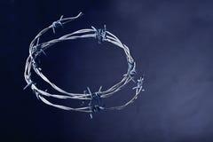 Coroa de espinhos imagem de stock royalty free