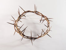 Coroa de espinhos Imagens de Stock Royalty Free