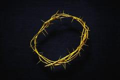 Coroa de espinhos amarela em um fundo preto, vista superior fotografia de stock royalty free