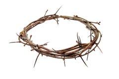 A coroa de espinhos Jesus Christ isolaten em branco fotografia de stock