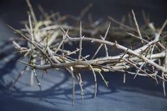 Coroa de espinhos natural como um símbolo da morte e da ressurreição de Jesus Christ fotografia de stock royalty free