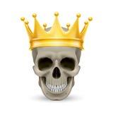 Coroa dourada no crânio Foto de Stock Royalty Free