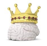 Coroa no cérebro Imagem de Stock Royalty Free