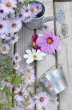 Corolla of  flowers on table. Metal can and corolla on wooden table in front of pink flowerbed Stock Images