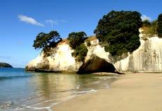 coromandel пляжа Стоковые Изображения