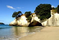 Coromandel Beach. Beach on the Coromandel Peninsula on the North Island of New Zealand Stock Images
