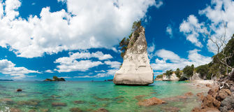 Coromandel Royalty Free Stock Photo