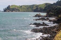 Coromandel-Halbinselküstenlinie Stockbild