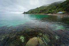 Coromandel-Küsten-Neuseeland-Tourismus Stockfotos