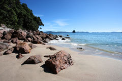 Coromandel Peninsula. Famous Cathedral Cove at Coromandel peninsula. New Zealand, North Island Stock Photos