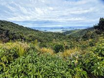 Coromandel royalty free stock image