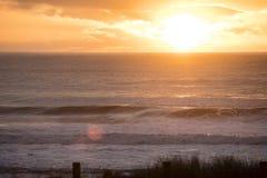 Coromandel plaży wschód słońca Obrazy Royalty Free