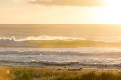 Coromandel plaży wschód słońca Zdjęcia Stock