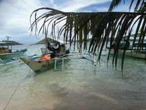 Coron, Palawan, Filippine Luppolizzazione di isola immagini stock