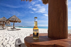 Corona on the Beach. A bottle of Corona (labeled as Coronita in Mexico) on the beautiful white sands of Maroma Beach in Riviera Cancun, Mexico royalty free stock images