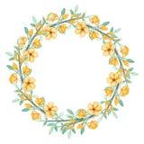 Corona con i fiori di giallo dell'acquerello e le erbe verdi royalty illustrazione gratis