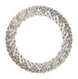 Corona d'argento dell'alloro Fotografia Stock Libera da Diritti