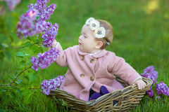 Corona d'uso di un anno sorridente del fiore della neonata 1-2, tenente mazzo del lillà all'aperto esaminando macchina fotografic Fotografia Stock Libera da Diritti