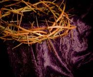 Corona de espinas Foto de archivo