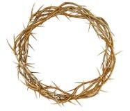 Corona de espinas de oro fotografía de archivo libre de regalías