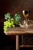 Corona de espinas y del vino Imagen de archivo libre de regalías