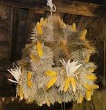 Corona de la cosecha Imágenes de archivo libres de regalías
