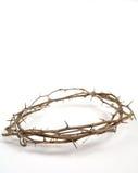 Corona de la espina de Jesús Imagen de archivo libre de regalías