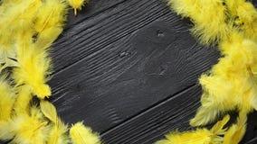 Corona decorativa variopinta della piuma di Pasqua sul fondo di legno nero della tavola video d archivio