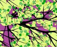 Corona degli alberi su un modello senza cuciture di vettore del fondo porpora Immagini Stock Libere da Diritti