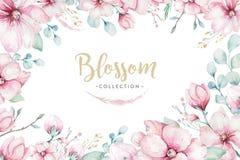 Corona dei fiori della ciliegia di rosa del fiore nello stile dell'acquerello con fondo bianco Metta del giapponese di fioritura  illustrazione di stock