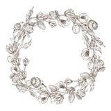 Corona dei fiori di erbe selvaggi Vettore Materiale illustrativo disegnato a mano Ami il concetto per gli inviti di nozze, le car Royalty Illustrazione gratis